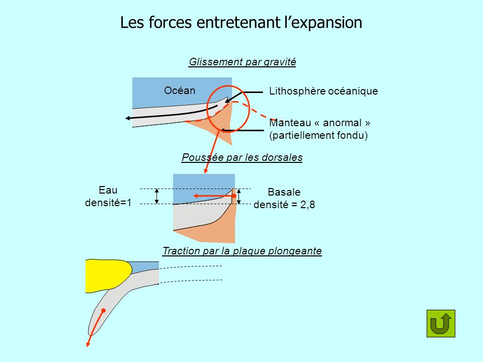 Les forces entretenant l'expansion