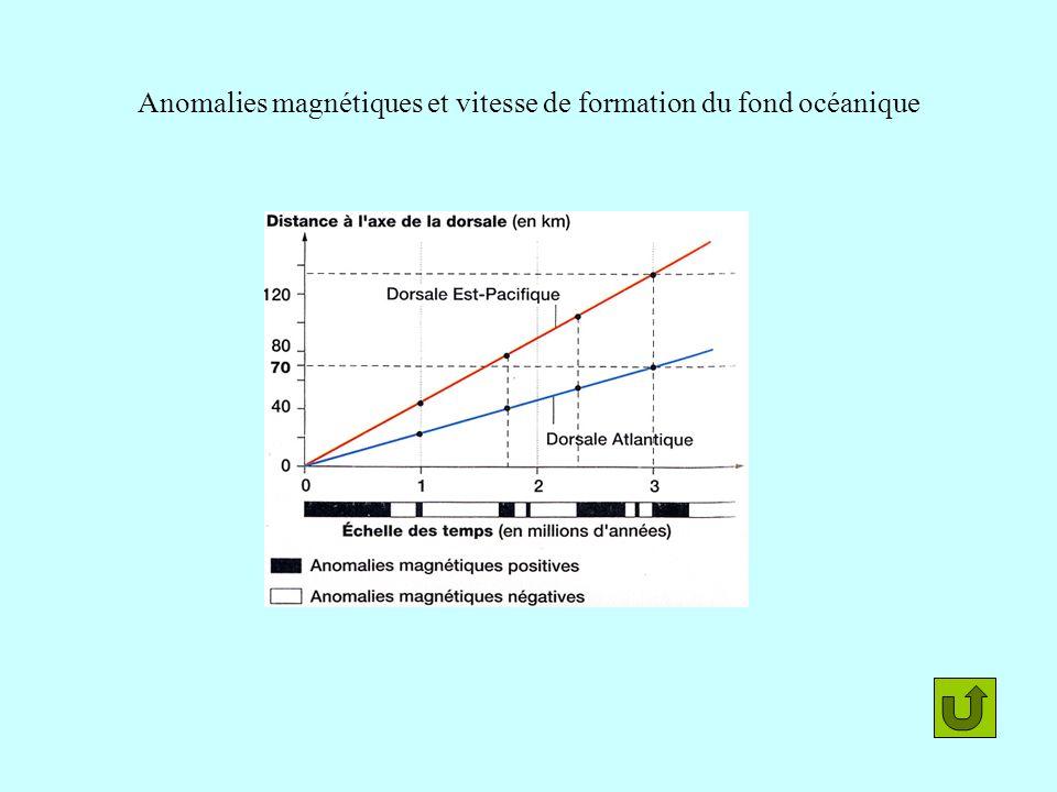 Anomalies magnétiques et vitesse de formation du fond océanique