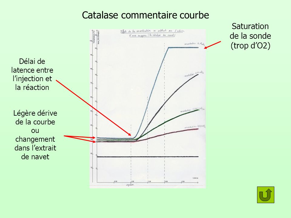 Catalase commentaire courbe