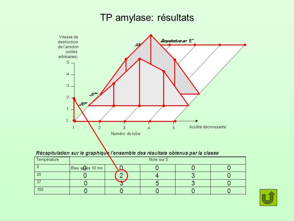 TP amylase: résultats Vitesse de. destruction. de l'amidon. (unités. arbitraires) Acidité décroissante.