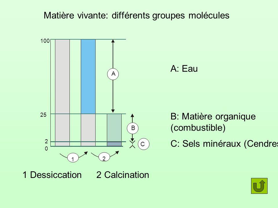 Matière vivante: différents groupes molécules