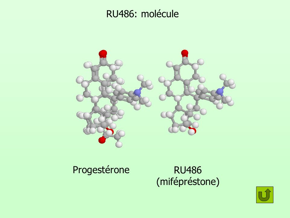 RU486: molécule RU486 (mifépréstone) Progestérone