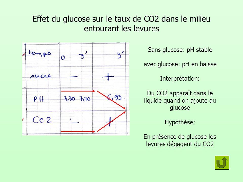 Effet du glucose sur le taux de CO2 dans le milieu entourant les levures