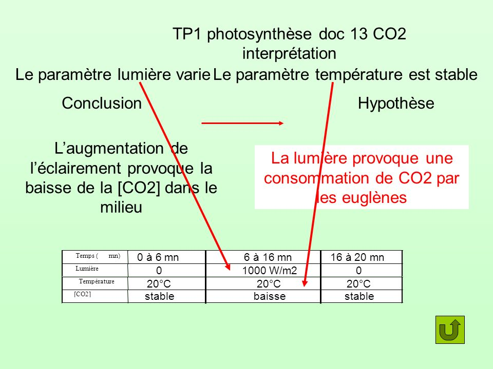 TP1 photosynthèse doc 13 CO2 interprétation