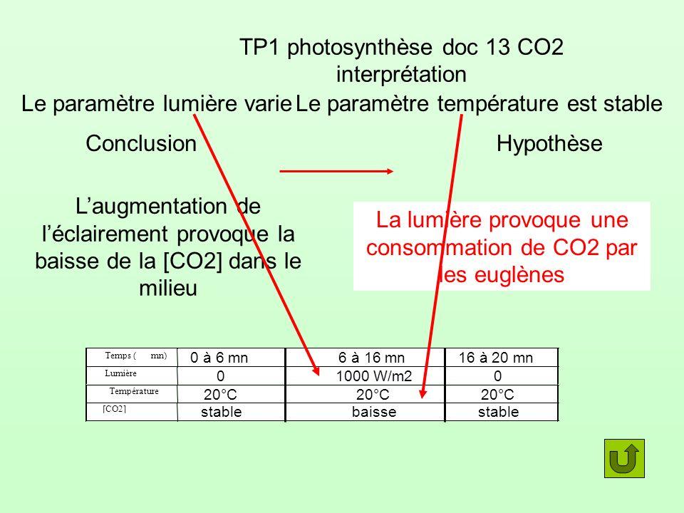 TP1 photosynthèse doc 13 CO2 interprétation