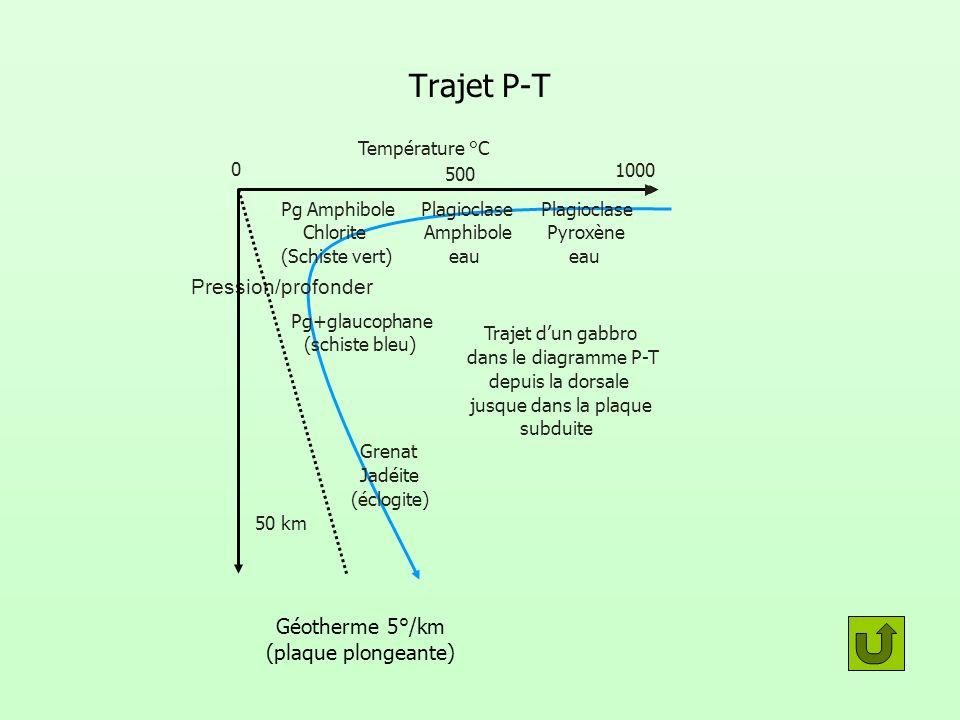 Géotherme 5°/km (plaque plongeante)