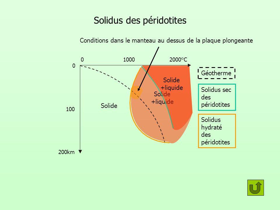 Solidus des péridotites