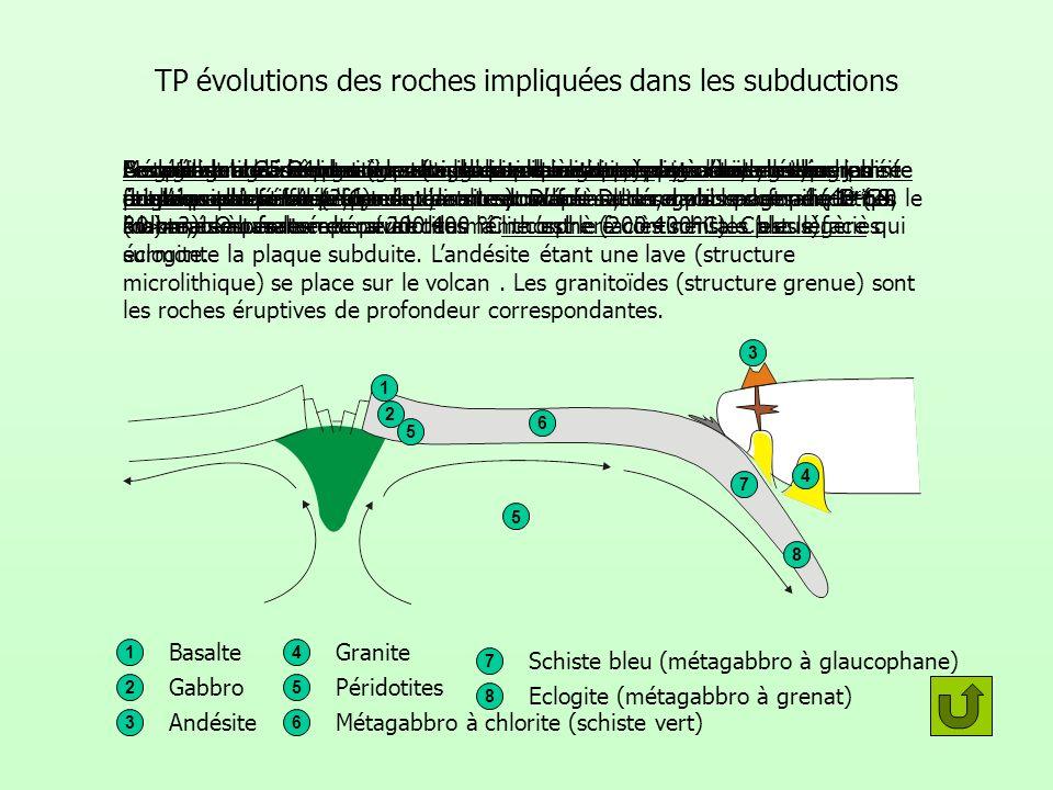 TP évolutions des roches impliquées dans les subductions
