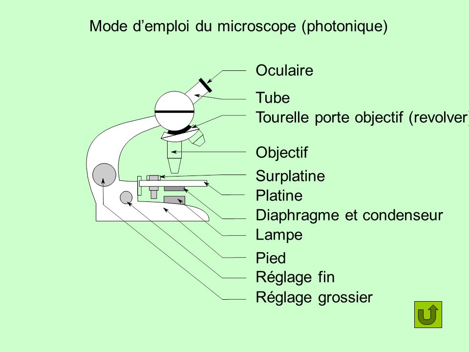 Mode d'emploi du microscope (photonique)