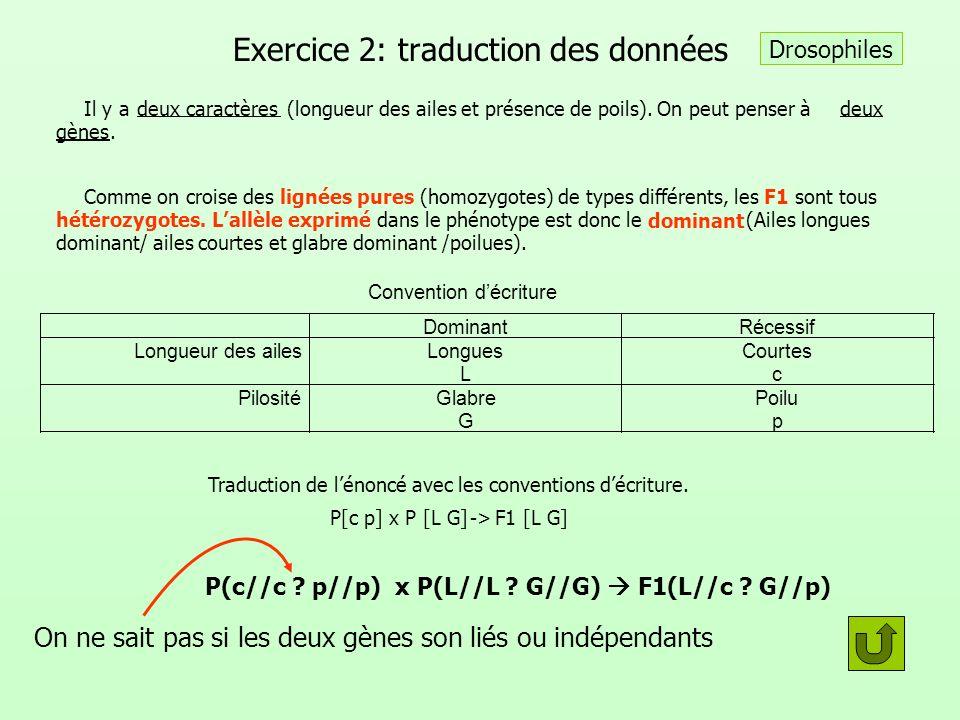 Exercice 2: traduction des données