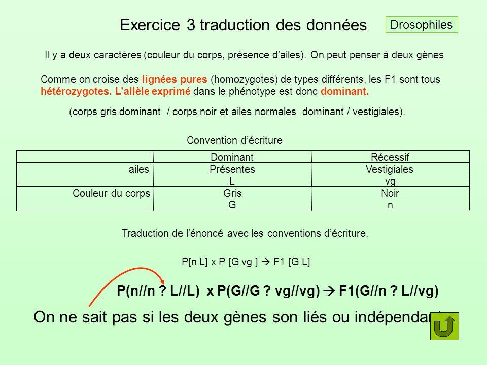 Exercice 3 traduction des données