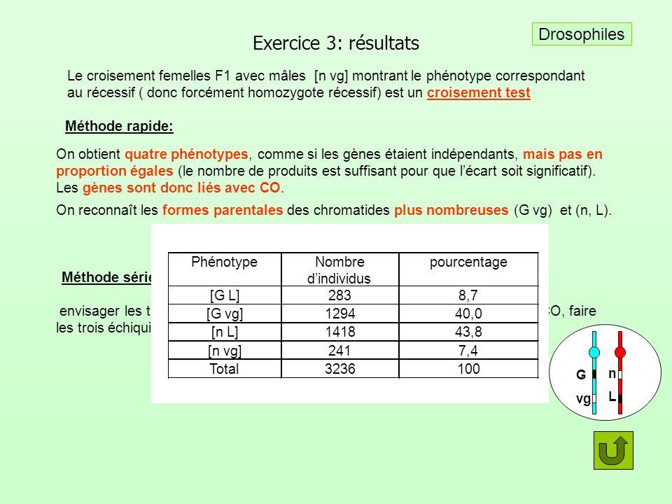 Exercice 3: résultats Drosophiles