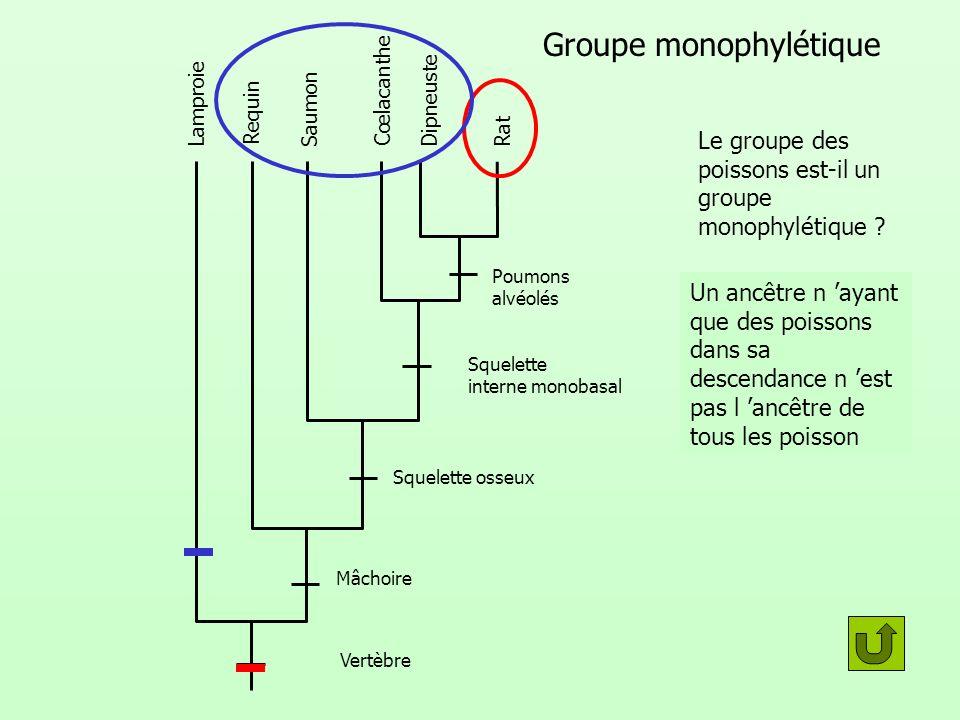 Groupe monophylétique