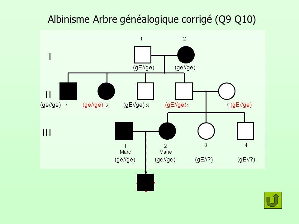 Albinisme Arbre généalogique corrigé (Q9 Q10)