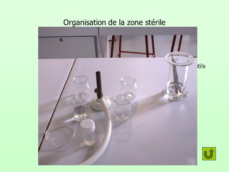 Organisation de la zone stérile