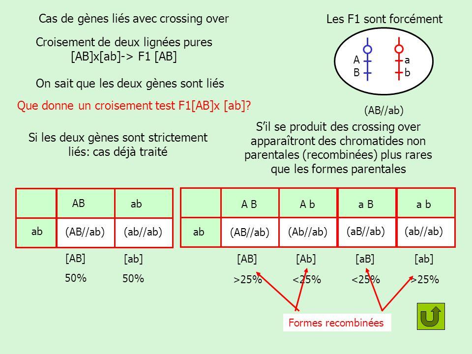 Cas de gènes liés avec crossing over