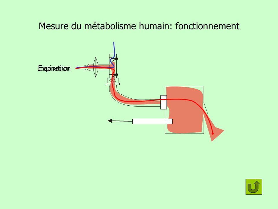 Mesure du métabolisme humain: fonctionnement
