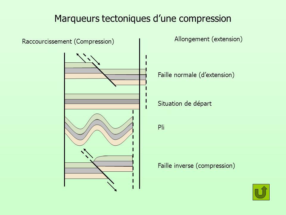 Marqueurs tectoniques d'une compression