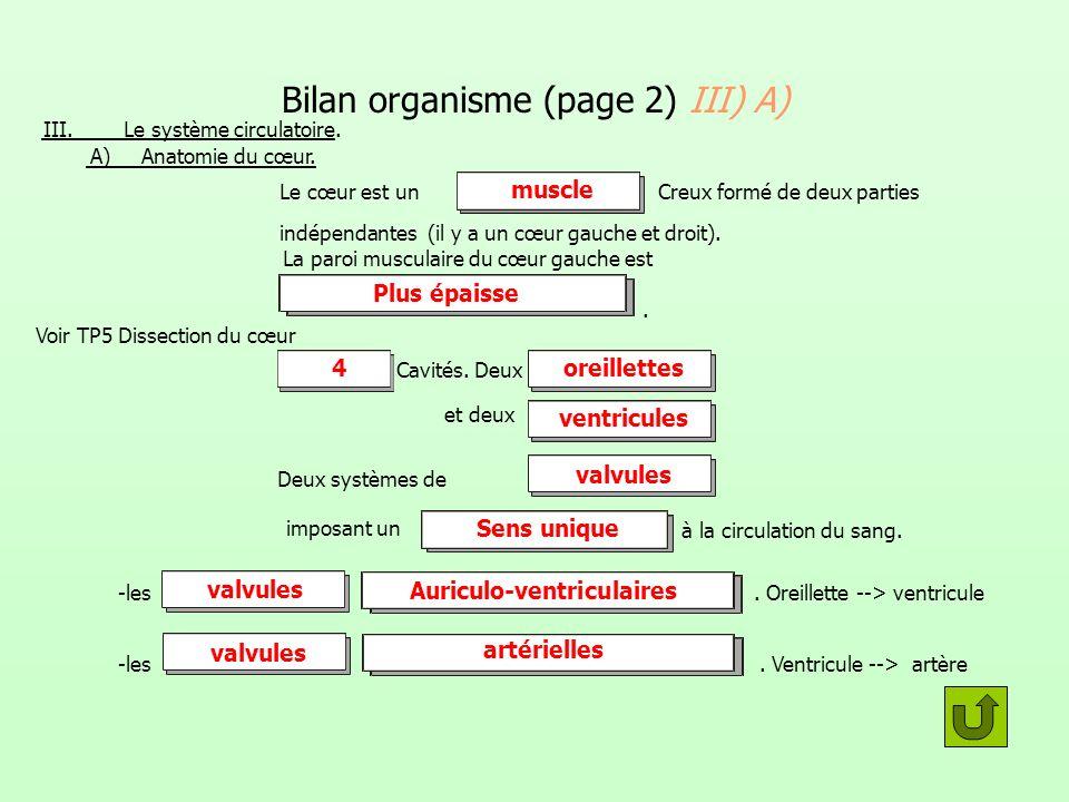 Bilan organisme (page 2) III) A)