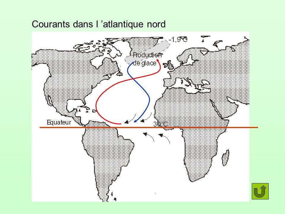 Courants dans l 'atlantique nord