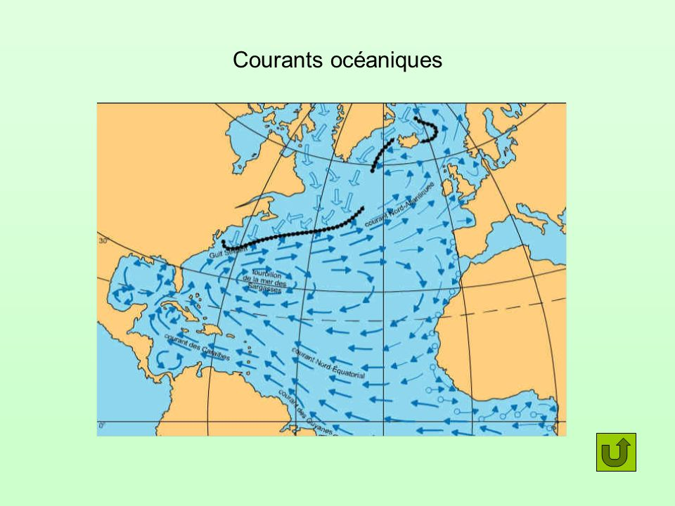 Courants océaniques