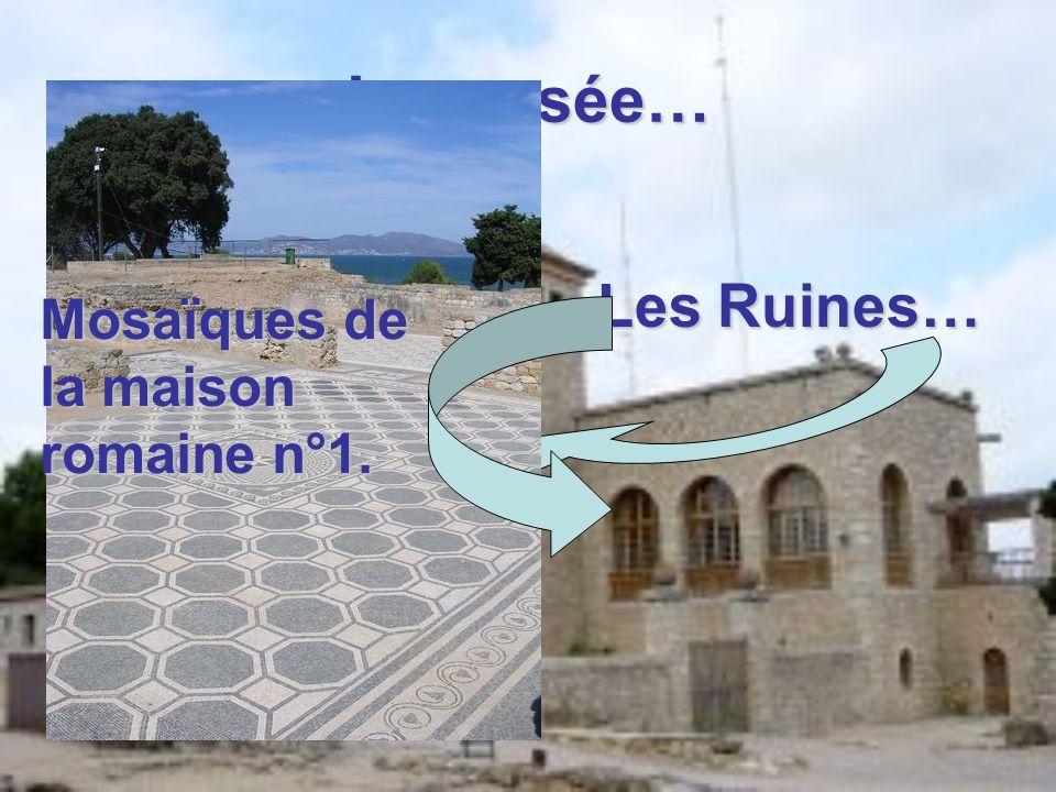Le musée… Les Ruines… Mosaïques de la maison romaine n°1.