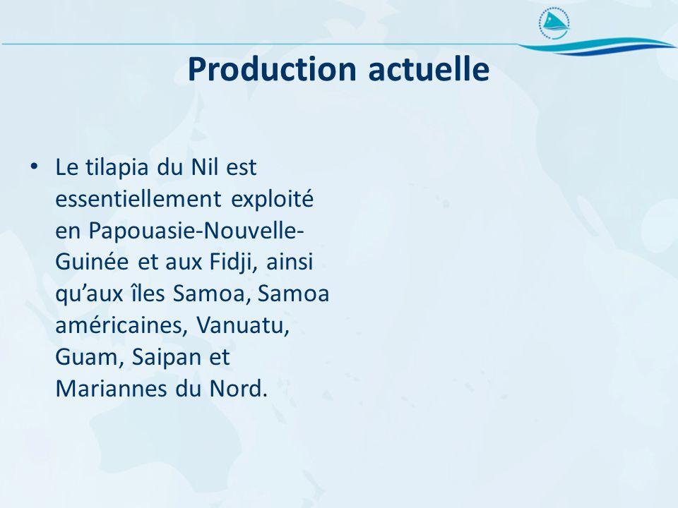 Production actuelle