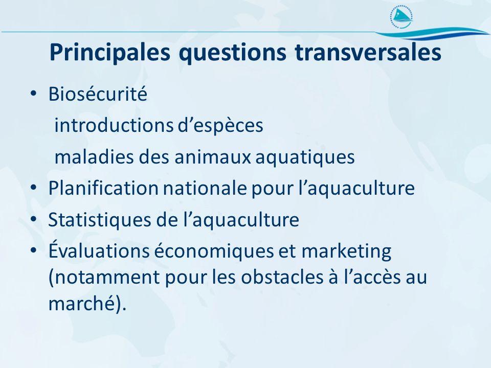 Principales questions transversales