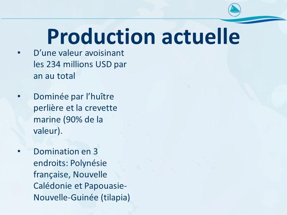 Production actuelle D'une valeur avoisinant les 234 millions USD par an au total.