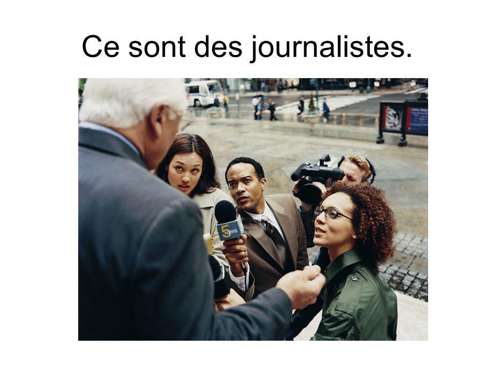 Ce sont des journalistes.