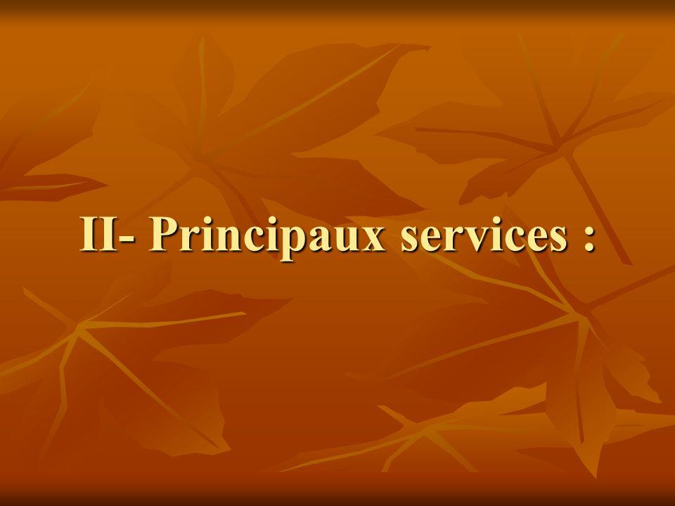 II- Principaux services :