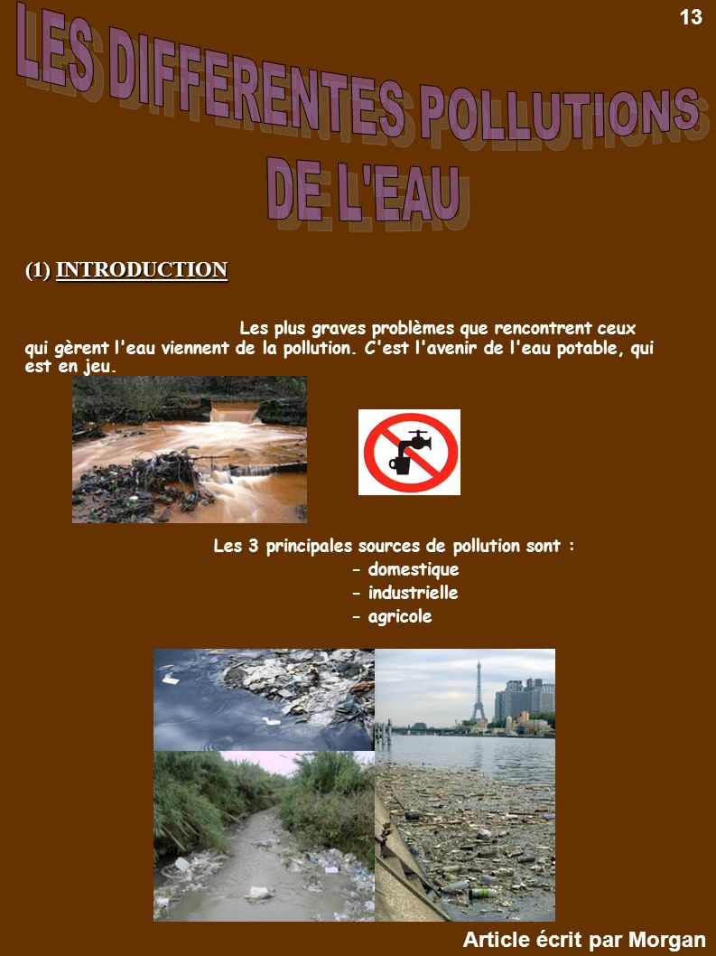 LES DIFFERENTES POLLUTIONS