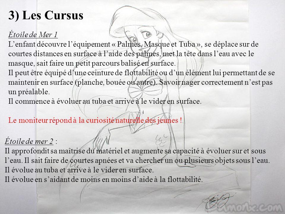 3) Les Cursus
