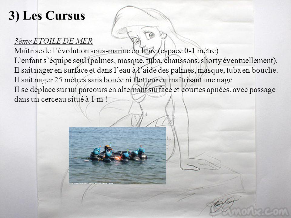 3) Les Cursus 3ème ETOILE DE MER