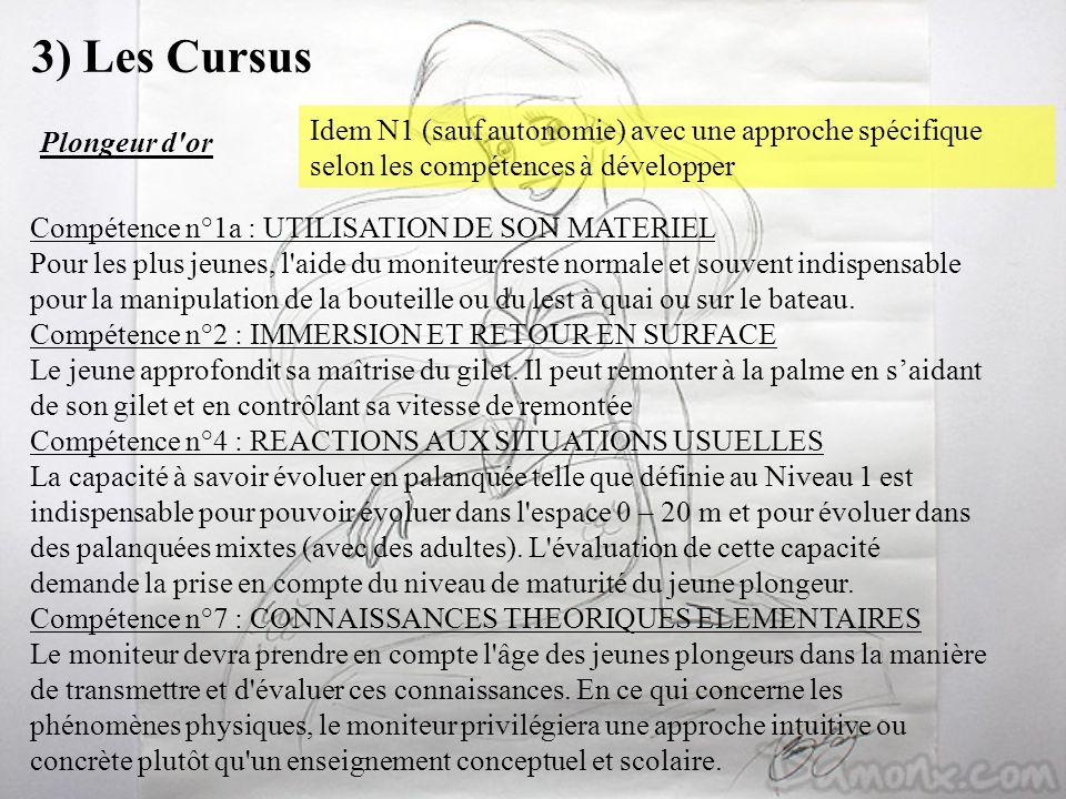 3) Les Cursus Idem N1 (sauf autonomie) avec une approche spécifique selon les compétences à développer.