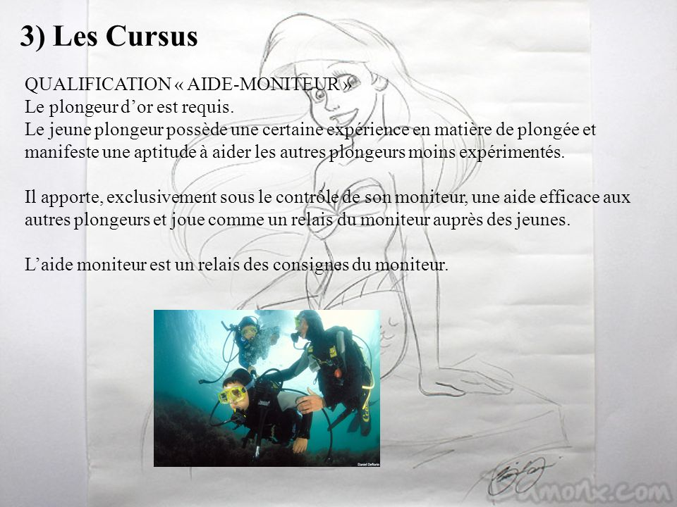 3) Les Cursus QUALIFICATION « AIDE-MONITEUR »