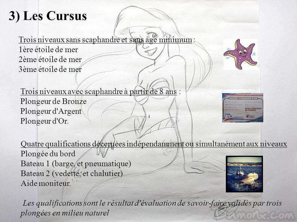 3) Les CursusTrois niveaux sans scaphandre et sans âge minimum : 1ère étoile de mer 2ème étoile de mer 3ème étoile de mer.