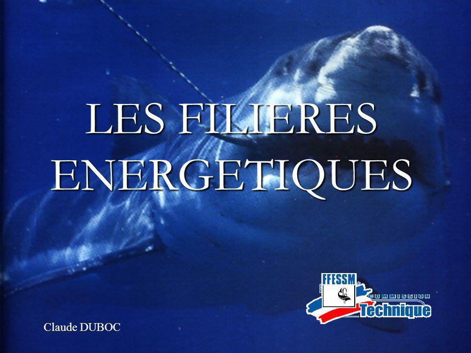 LES FILIERES ENERGETIQUES