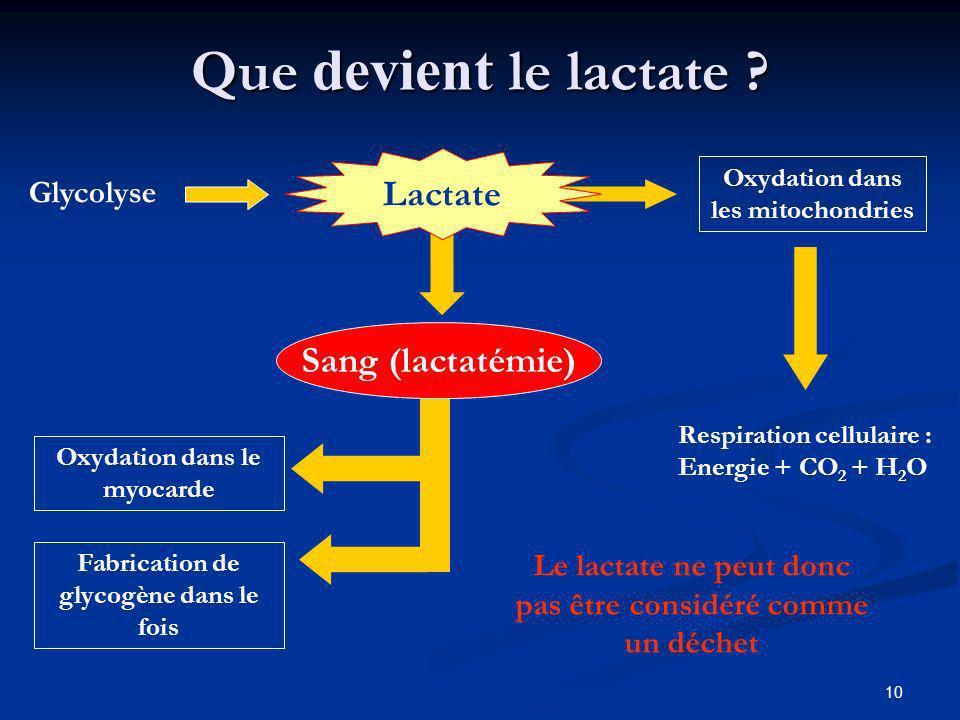 Que devient le lactate Lactate Sang (lactatémie) Glycolyse