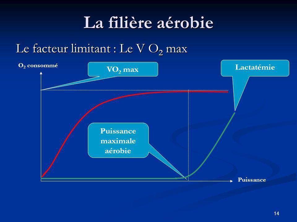Puissance maximale aérobie