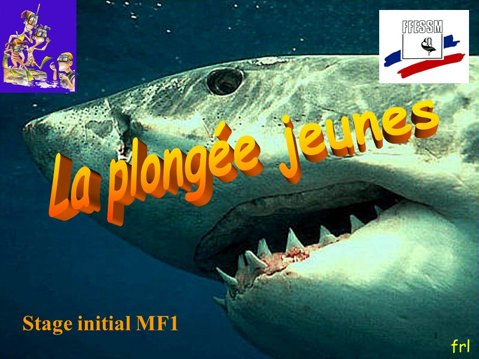 La plongée jeunes Stage initial MF1 frl