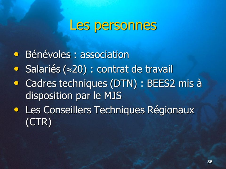 Les personnes Bénévoles : association