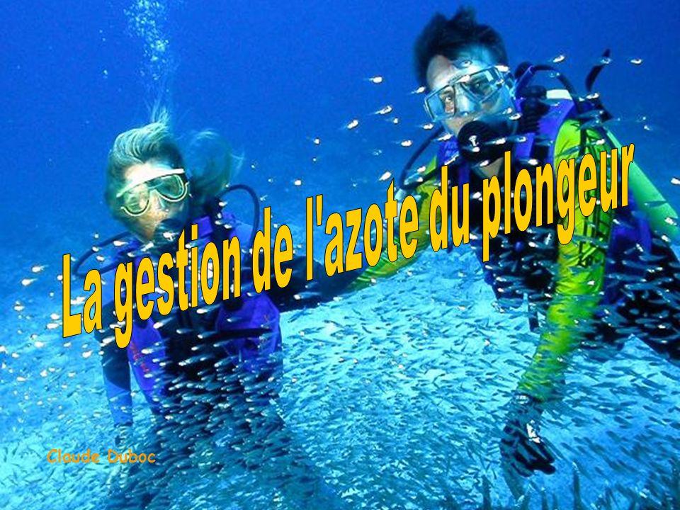 La gestion de l azote du plongeur
