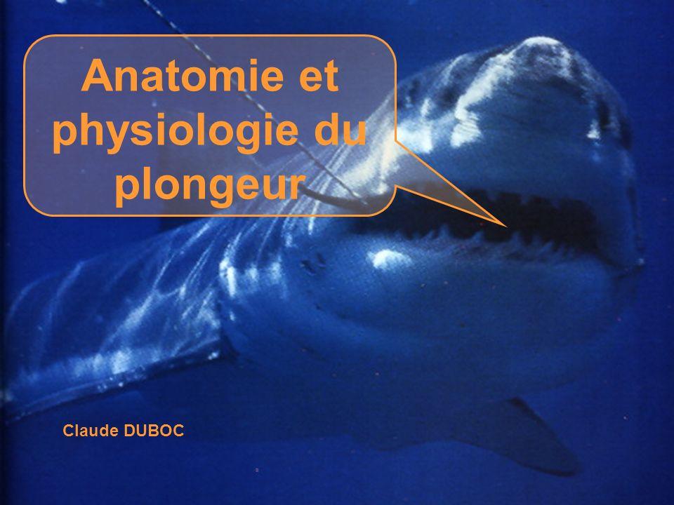 Anatomie et physiologie du plongeur