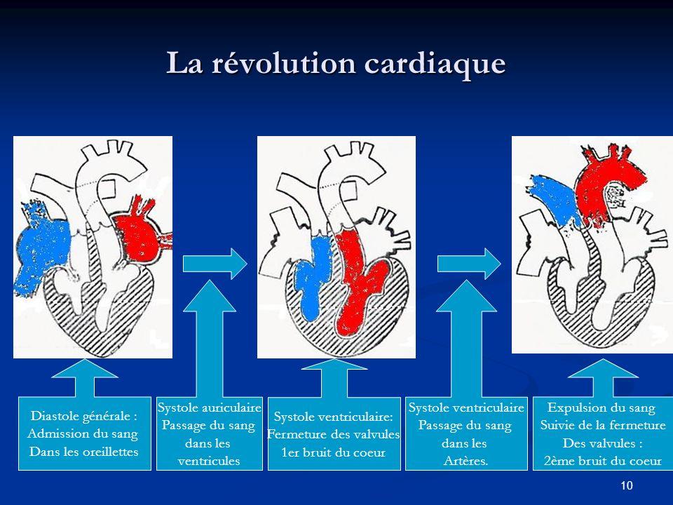 La révolution cardiaque