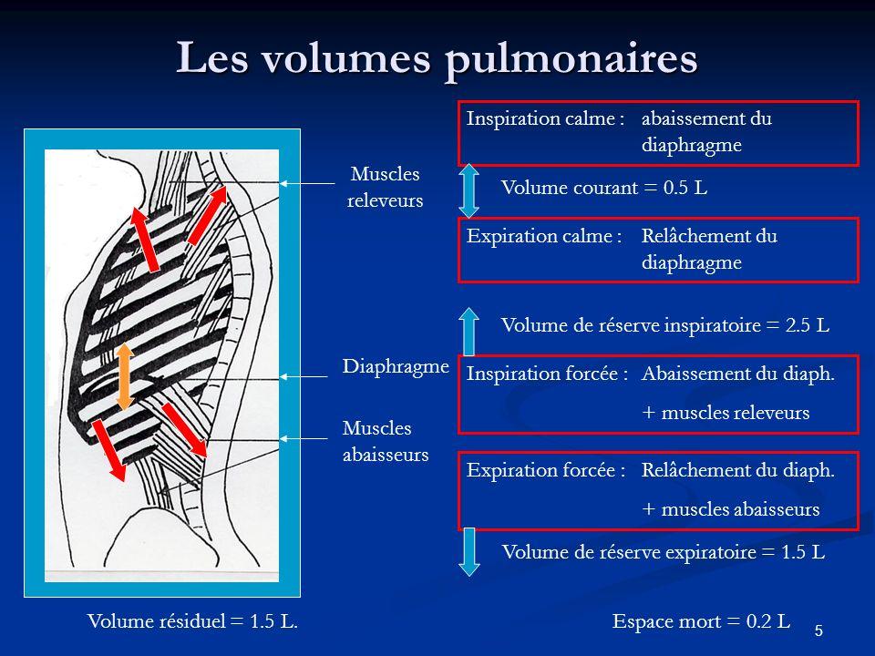 Les volumes pulmonaires