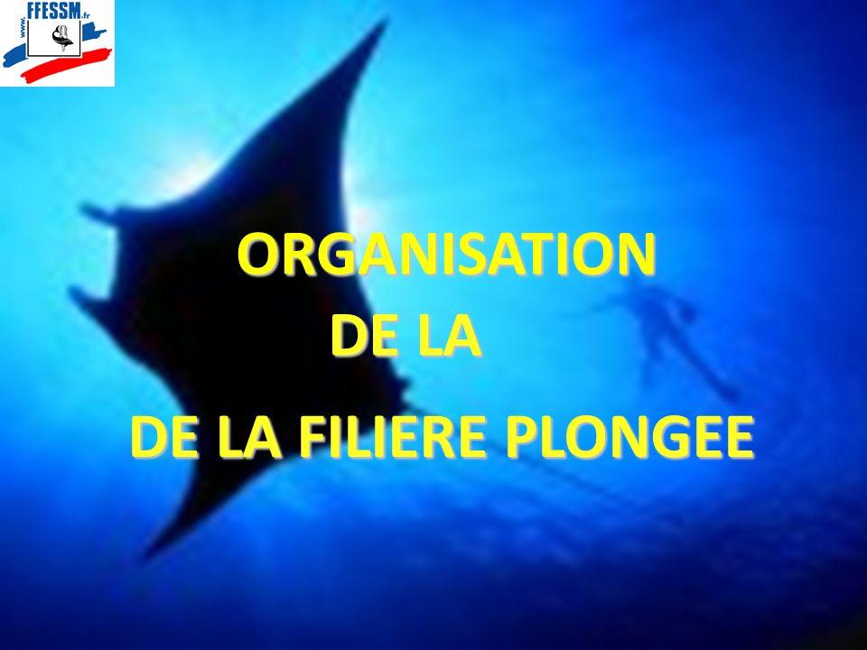 ORGANISATION DE LA DE LA FILIERE PLONGEE