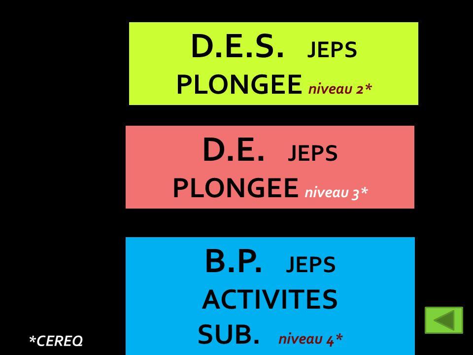 D.E.S. JEPS D.E. JEPS B.P. JEPS PLONGEE niveau 2* PLONGEE niveau 3*