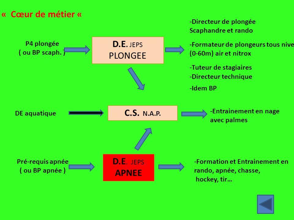 « Cœur de métier « D.E. JEPS PLONGEE C.S. N.A.P. D.E. JEPS APNEE