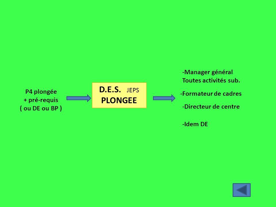 D.E.S. JEPS PLONGEE -Manager général Toutes activités sub. P4 plongée